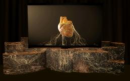 Eyesberg Studio - The 50th Best Restaurants 13